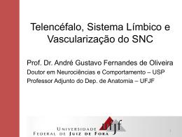 Apresentação do PowerPoint - Universidade Federal de Juiz de Fora