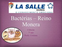 As bactérias