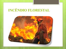 Incêndio Florestal 1 - master cursos e brigadas