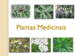 Propriedade medicinais