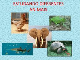 ESTUDANDO DIFERENTES ANIMAIS - colégio são paulo