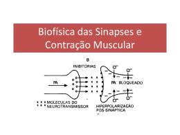 pat Biofísica das Sinapses e Contração Muscular