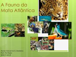 Trabalho de Ciências – Mata Atlântica Giovanna