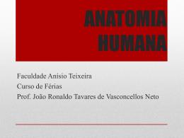 ANATOMIA HUMANA - jvasconcellos.com.br