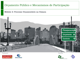 Processo Legislativo municipal - Gisela Palmieri Torquato