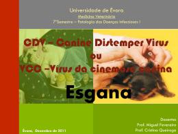 Canine Distemper Virus (CDV)