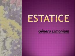 hugo e amanda ESTATICE - Agronomia - Cassilândia