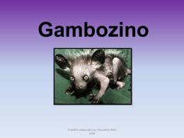 Gambuzino - pradigital-theodore