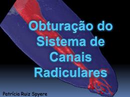 obturacao - Patrícia Ruiz Spyere
