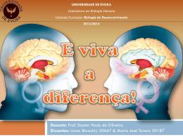 Cérebro - Biologia do Desenvolvimento 2014