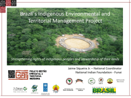 Brazil`s Indigenous Environmental and Territorial Management Project