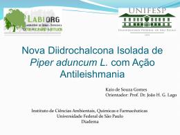 Nova Diidrochalcona Proveniente de Piper