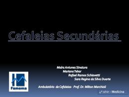 Seminário apresentado pelos acadêmicos de medicina do 4º ano