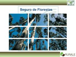 FLORESTAS SEGURÁVEIS