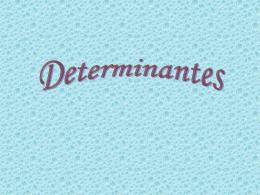 Determinantes - Curso e Colégio Acesso