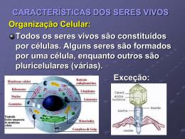 CARACTERÍSTICAS DOS SERES VIVOS Organização Celular