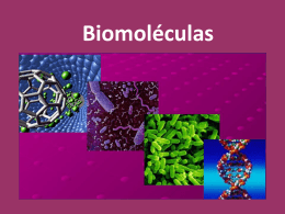Biomoléculas - WordPress.com