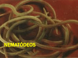 NEMATÓDEOS