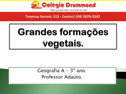 Grandes formações vegetais.