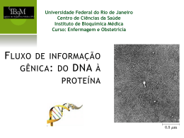 Fluxo de informação gênica: do DNA à proteína