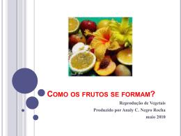 Como os frutos se formam?