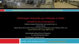 INFLAMAÇÃO INDUZIDA POR INFECÇÃO E LESÃO CEREBRAL