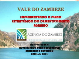 1 vale do zambeze implementando o plano estratégico do
