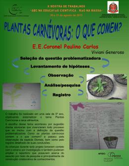poster 16_plantas ca..