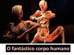 fantastico-corpo
