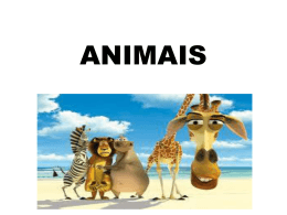 ANIMAIS - WordPress.com
