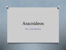 Aracnídeos - Biologiaquimica