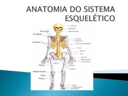 0000159_3ª aula ANATOMIA DO SIST. ESQUELÉTICO AXIAL
