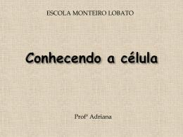 8o ANO - AS CÉLULAS - Escola Monteiro Lobato