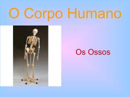 os ossos.ppt 4º ano