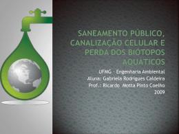 Saneamento público, canalização celular e perda dos biótopos