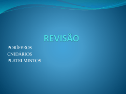 revisoparateste-110914102439