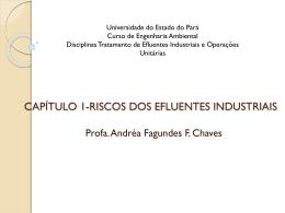 CAPÍTULO 1-RISCOS DOS EFLUENTES INDUSTRIAIS