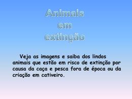 animais em risco de extinção.