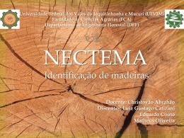 Apresentação_Nectema (7214582)