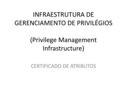 INFRAESTRUTURA DE GERENCIAMENTO DE PRIVILÉGIOS