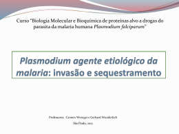 Plasmodium: invasão e sequestramento