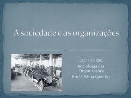 A sociedade e as organizações