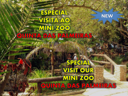 especial visita ao mini zoo quinta das palmeiras inclui o bilhete de