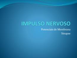 IMPULSO NERVOSO - Estudo Psicologia
