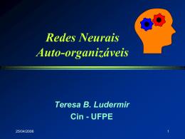 Redes Auto-organizáveis - Centro de Informática da UFPE