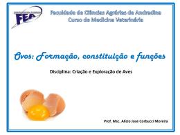 Ovos – constituição e função