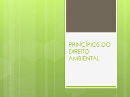 princípios do direito ambiental com questões