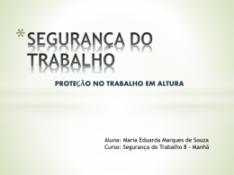 SEGURANÇA DO TRABALHO 1 (508456)