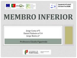 Membro Inferior (3000476)