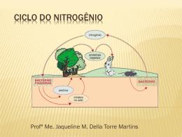 CICLO DO NITROGÊNIO - Profª Jaqueline Della Torre Martins